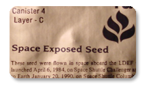 NASA Space Seeds Experiment