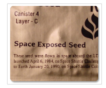 Space Seeds